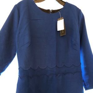 NWT BR Navy 3/4 sleeve dress with scalloped waist